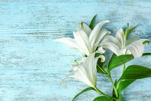 Beautiful White Lilies On Colo...