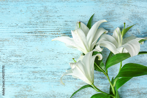Fotografia  Beautiful white lilies on color wooden background
