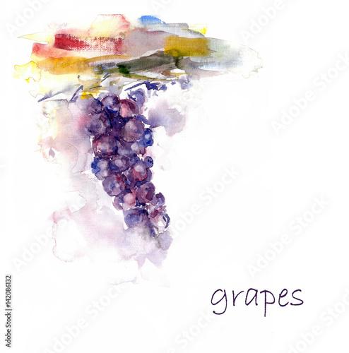 Watercolor grape. Vine hand drawing illustration. Abstract illustration of grape. Fototapete
