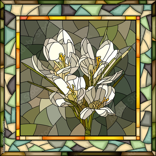 wektorowa-ilustracja-kwiatu-bielu-krokus