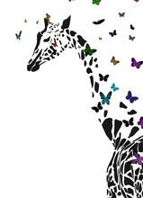 Vector Silhouette Of  Giraffe ...