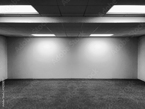 Perspective view of Empty Space Classic Office Room with Row Ceiling ...