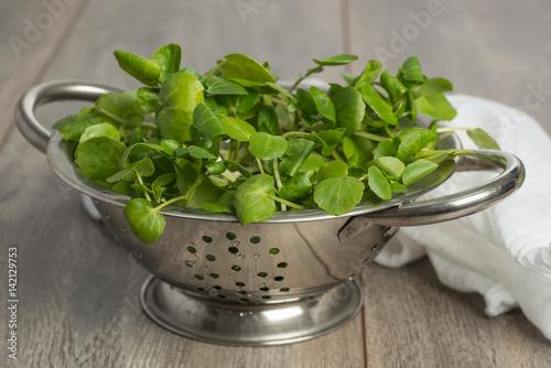 Fotografie, Obraz  Colander filled with fresh watercress salad on wooden table