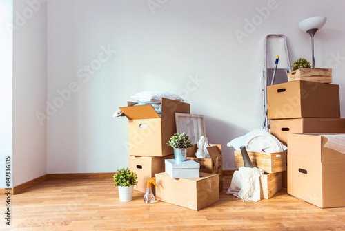 Obraz Move. Cardboard boxes and cleaning things for moving into a new home - fototapety do salonu