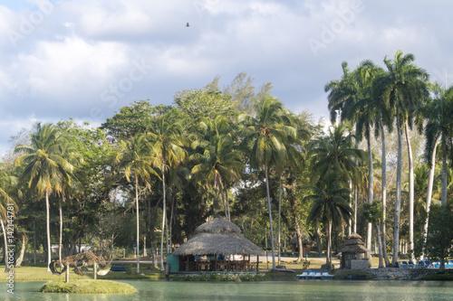 Landscape in Lagos de Mayajigua or San Jose del Lago-Cuba Canvas-taulu