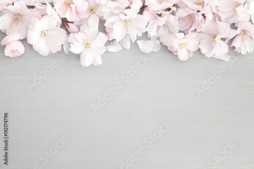 Ingelijste posters Kersenbloesem Floral background with cherry blossoms