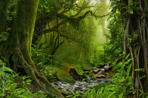 Tuinposter Jungle Nepal jungle with river