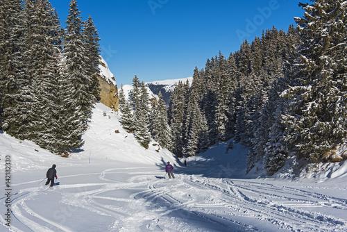 Fotobehang Wintersporten Skiers on a piste in alpine ski resort