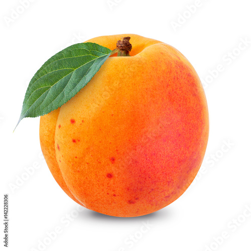 apricot Wallpaper Mural