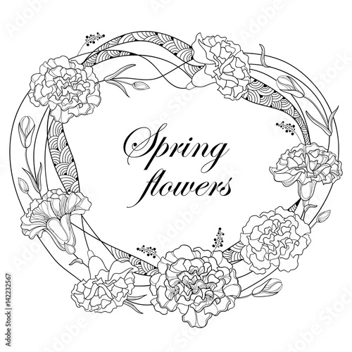 Vector round frame with outline Carnation or Clove. Flower, bud and ...