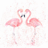Watercolor flamingos with splash. Painting image - 142246317