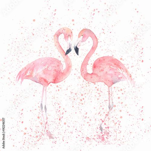 Akwarela flamingi z splash. Malowanie obrazu