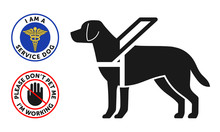 Guide-dog Symbol With Two Round Service Dog Badges