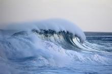 Hawaiian Winter Wave