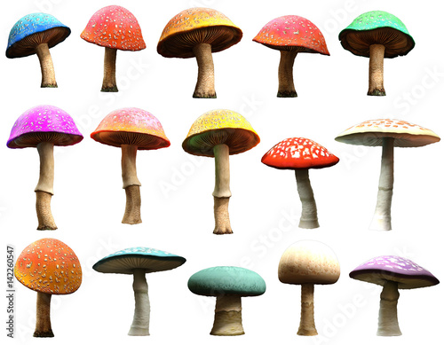 Fotografie, Obraz  Mushrooms 3D illustration