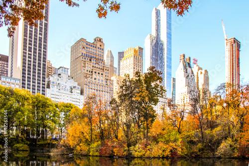 Fototapeta New York City Skyline from Central Park obraz