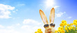 canvas print picture - Frohe Ostern!