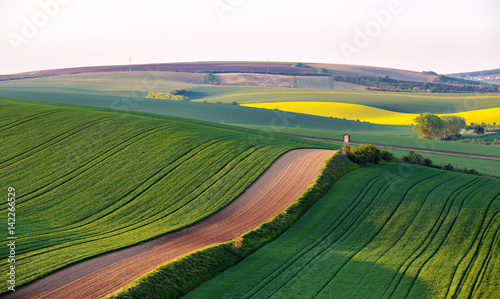 Poster Melon Shooting box on spring green fields of Czech Moravia