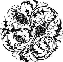Beautiful Black And White Roun...