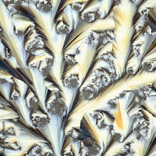 Crystals of a common painkiller, Panacod Canvas Print