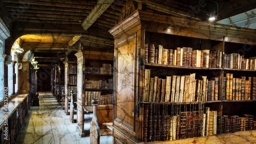 Fotografie, Obraz  Old English Library