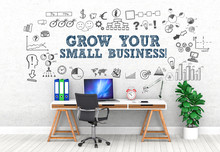 Grow Your Small Business ! / ...