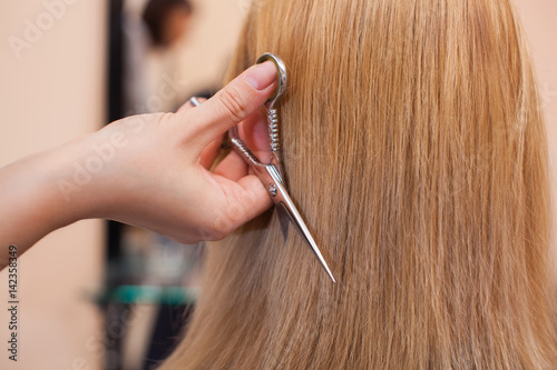 The hairdresser does a haircut with scissors of hair to a young girl, a blonde in a beauty salon.
