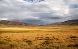 A wide valley steppe with yellow grass under a cloudy sky on the background of mountain ranges, the Altai mountains, Siberia, Russia