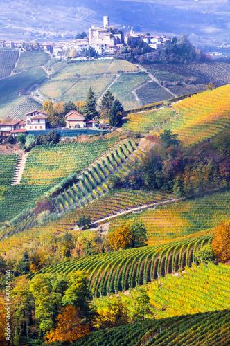 Spoed Fotobehang Meloen Vineyards and castles of Piemonte in autumn colors. Italy