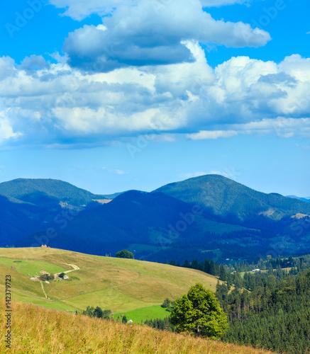Fototapeta Summer Carpathian Mountains. obraz na płótnie