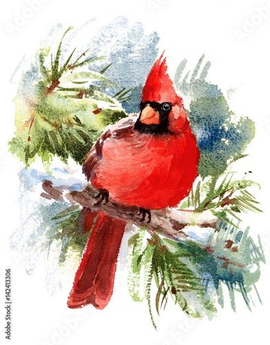 Bird Winter Bird House Clip Art Winter Bird House With