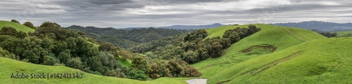 Fotografia Lush Green Winter Panorama after a long drought ends in Northern California