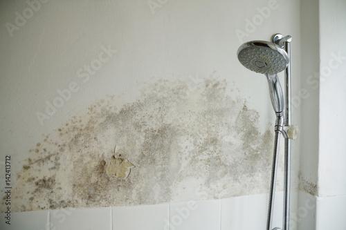 Photographie Schimmel im Badezimmer