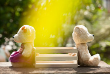 Two Teddy Bears Feeling Heartbroken Sitting Opposite A Wooden Box In The Middle.  Concept Of Love Understanding And Tenderness.  With Lens Flare, Natural Background