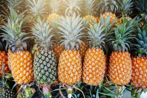 Dużo ananasowego owocowego tła