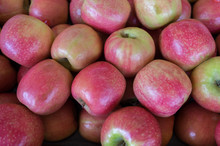 Pink Lady Apples For Sale At C...