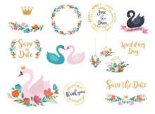 Wedding And Birthday Set With Swan Illustrations, Lettering, Flowers And Elements