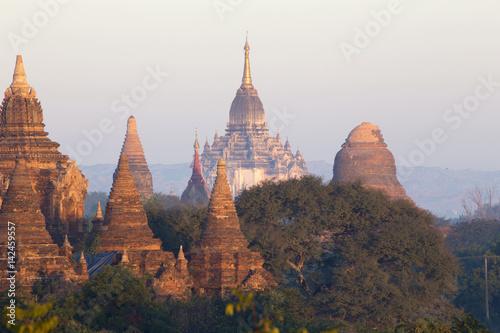 Garden Poster Light pink Bagan temple during golden hour