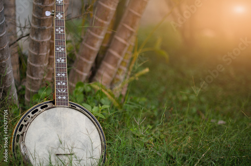 Photo An old banjo rests on a piece of green on a farm lawn