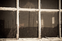 Single Pane Painted Window Wit...