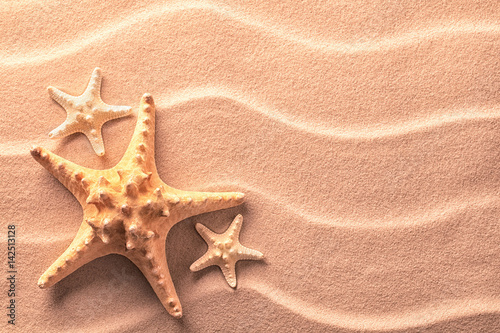 Sea star fish on an idylic tropical beach with ripples in the sand. Tree starfish as concept for summer holiday or vacation, texture background with copy space...