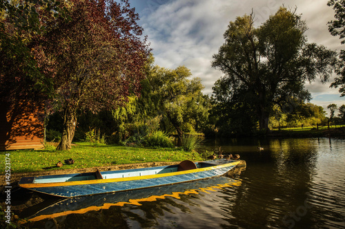 Fotografie, Obraz Oxford University Park, Oxfordshire - punting in a river on a sunny day