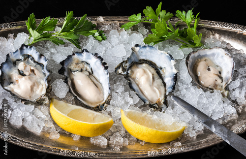Raw oysters on ice Wallpaper Mural