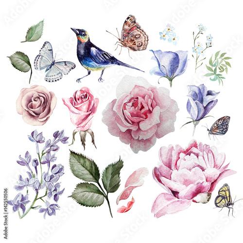akwarela-z-kwiatami-rozy-bzu-eukaliptusa-piwonii-i-forget-me-motyle-i-ptak