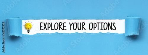 Fototapeta Explore your Options / Paper obraz