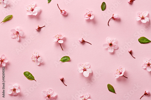 Foto op Canvas Bloemen Flower blossom pattern on pink background. Top view