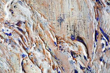 FototapetaПотертые слои краски и состаренный фон