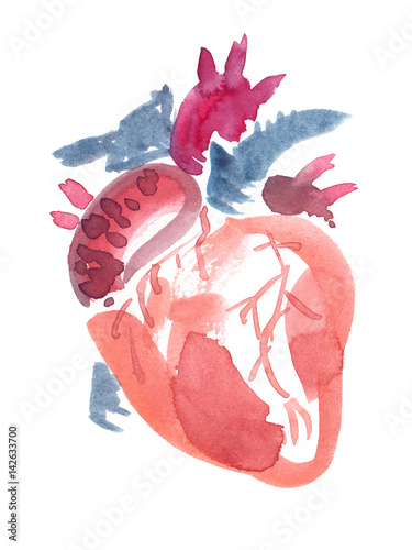 Abstract Anatomical Human Heart Painted In Watercolor On