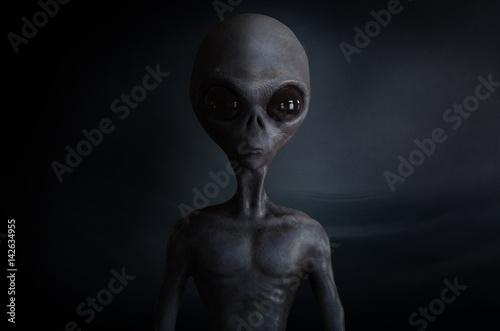 Fotografie, Obraz alien