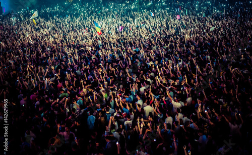 crowd at concert - summer music festival - 142679965